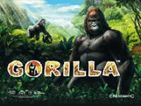 Азартная игра Gorilla